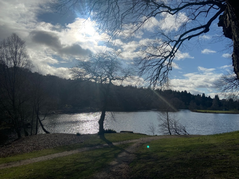 A bright blue sky and a loch visible through the silhouette of trees in the foreground.